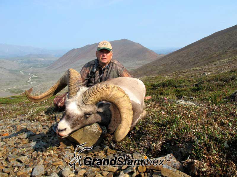 b-grand-slam-ibex-snow-sheep-6