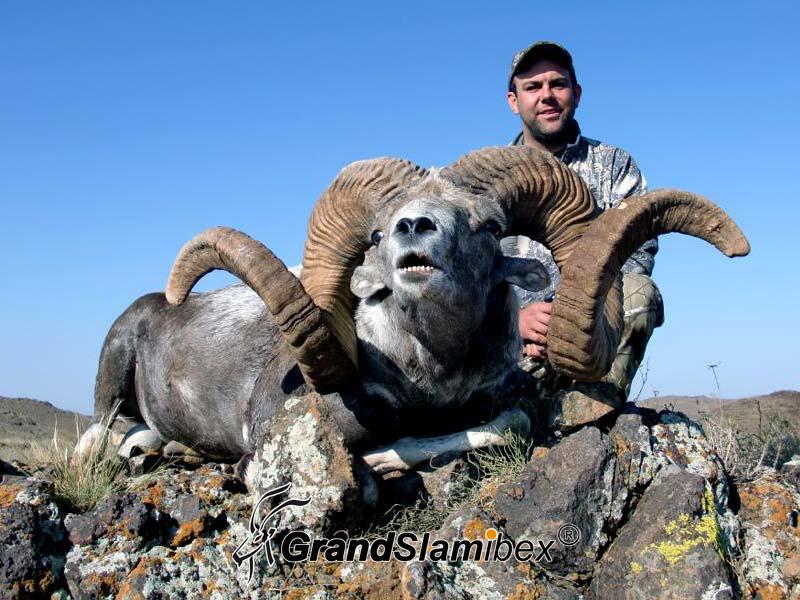 grand-slam-ibex-altai-argali-5