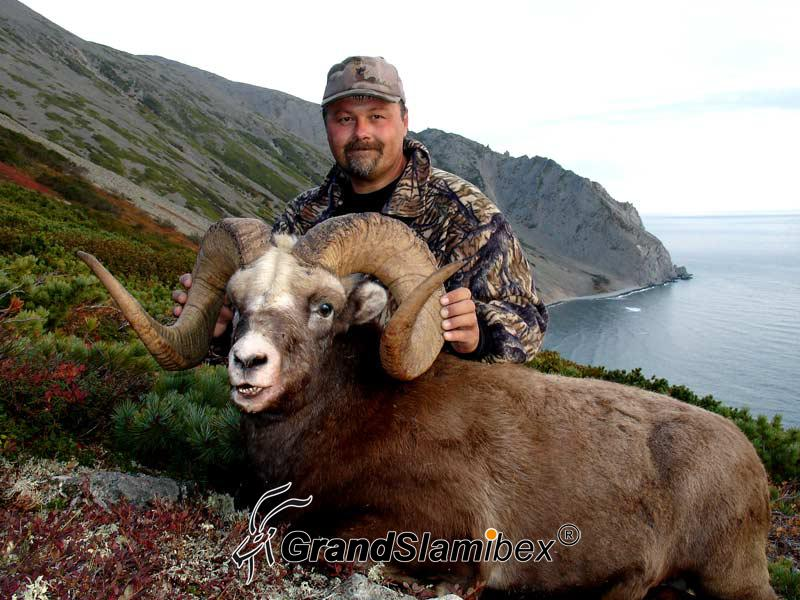 grand-slam-ibex-snow-sheep-51