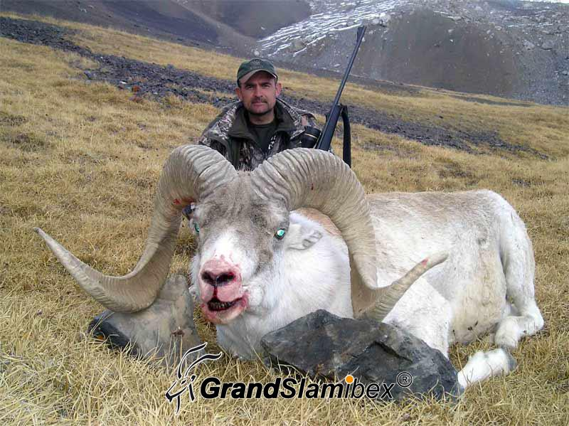 marco-polo-grand-slam-ibex