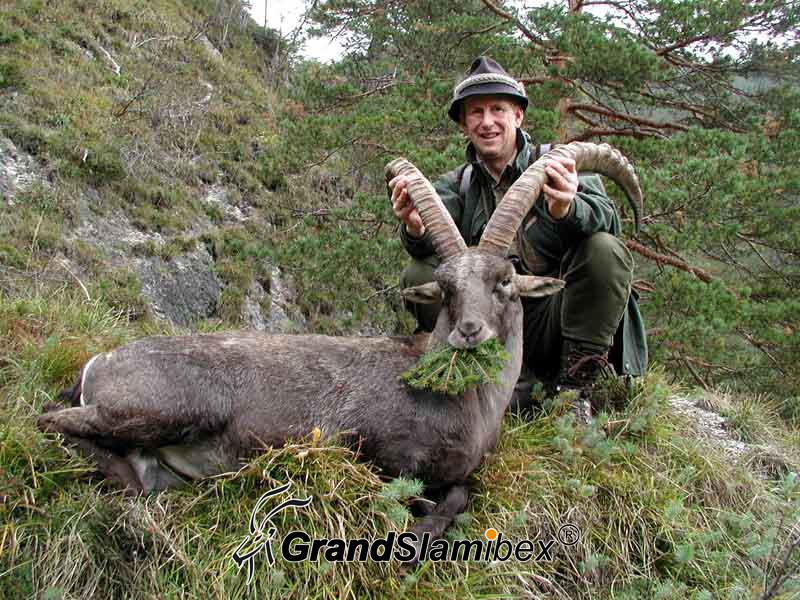 Alpine-Ibex-Hunting-in-Austria- S2 (1)