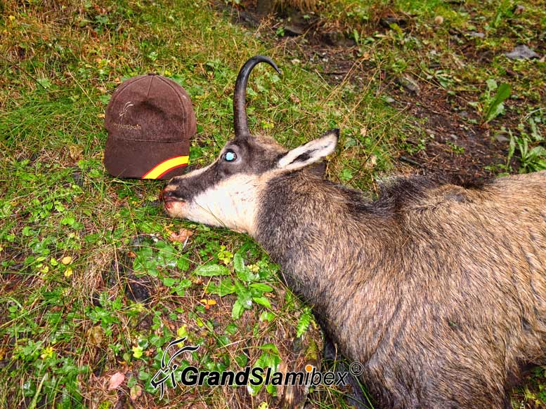 Alpine-chamois-hunting-in-Switzerland -S2 (1)