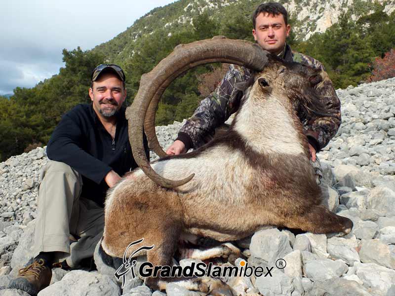 Bezoar-Ibex-Hunting-in-Turkey (3)