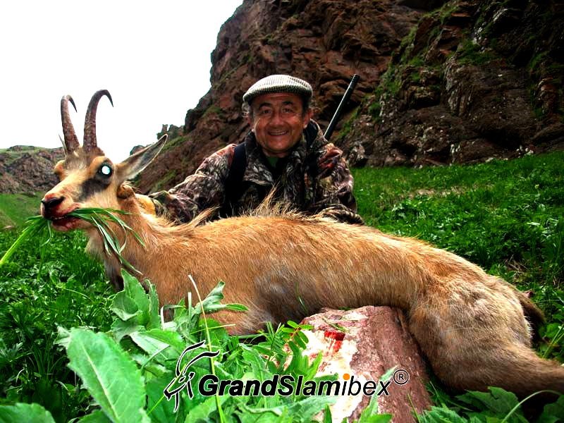 Caucasian-Chamois-Hunting-in-Russia- S1 (1)