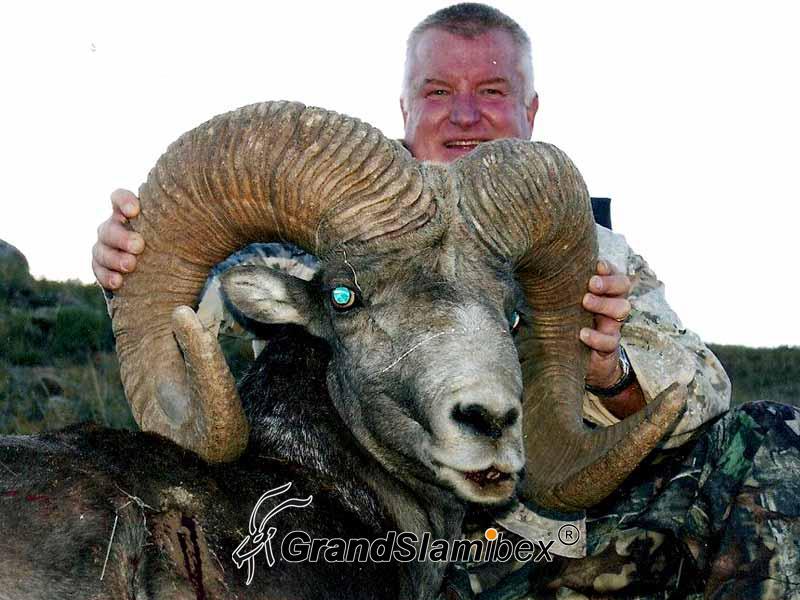 Gobi-Argali-Hunting-in-Mongolia (1)