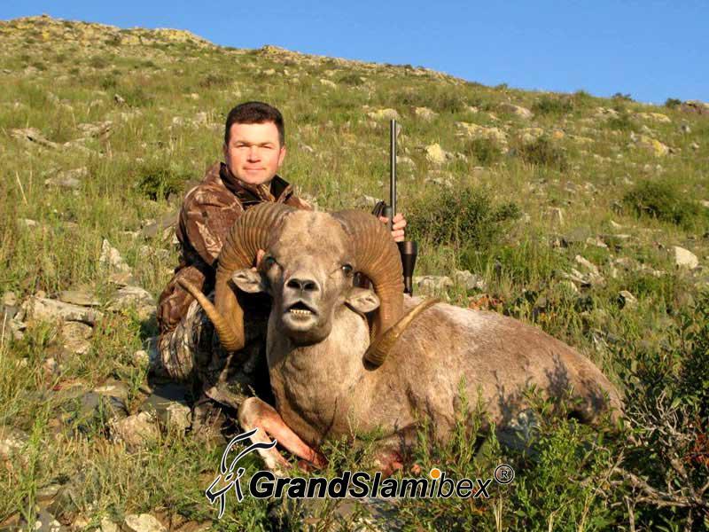 Gobi-Argali-Hunting-in-Mongolia (4)
