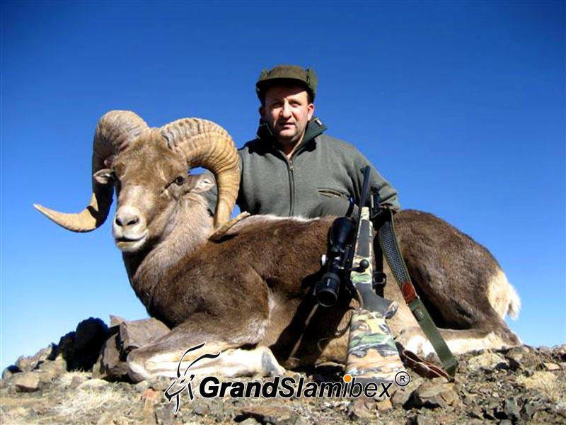 Gobi-Argali-Hunting-in-Mongolia (5)