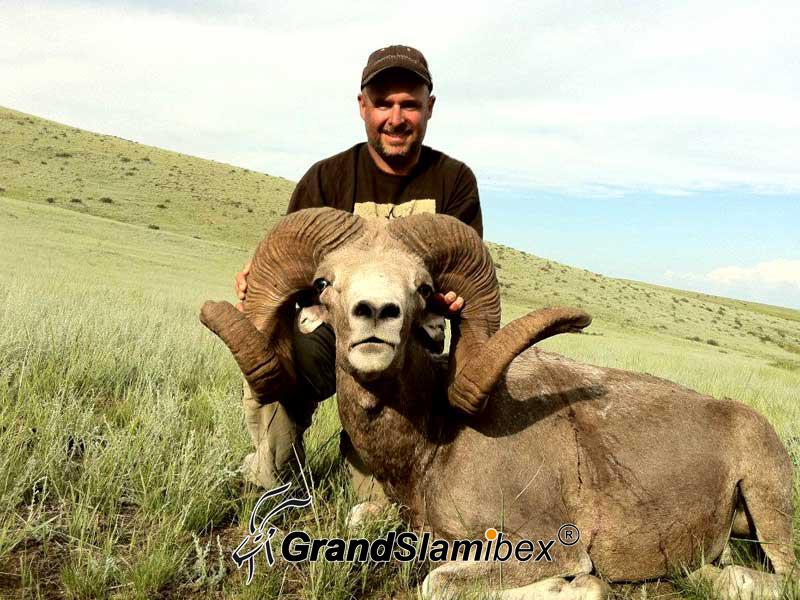 Hangai-Argali-Hunting-in-Mongolia (1)