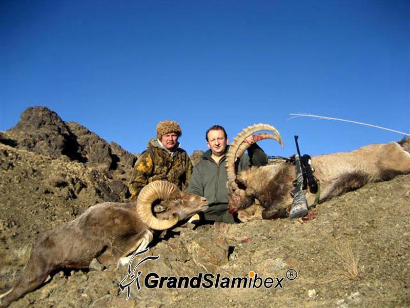 Hangai-Argali-Hunting-in-Mongolia (2)