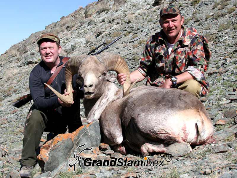 Hangai-Argali-Hunting-in-Mongolia (5)