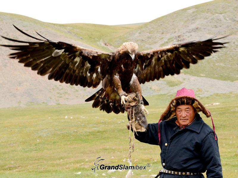 Hunting-in-Mongolia