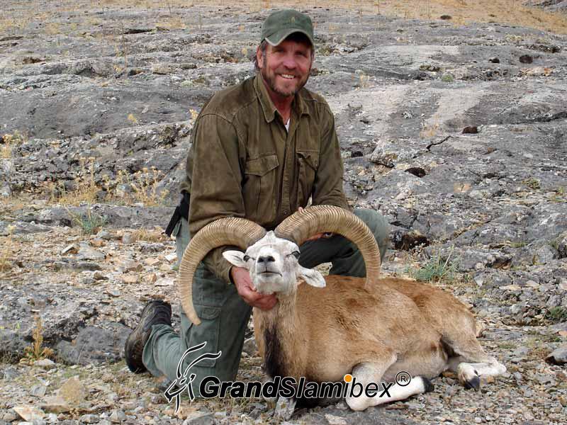Konya-Sheep-hunting-in-Turkey - S1 (1)