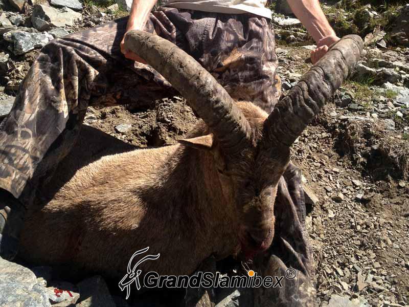 Kuvan-Tur-Hunting-in-Russia (6)