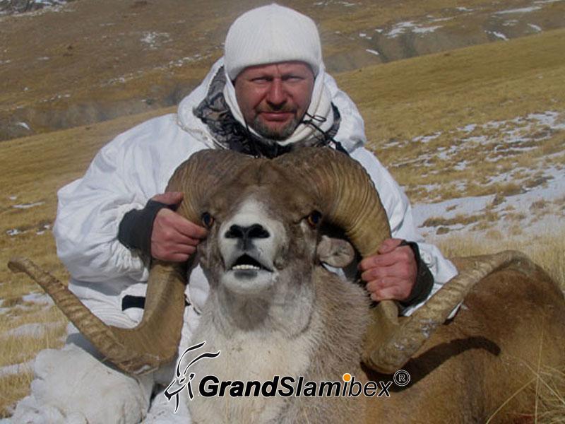Marco-Polo-Sheep-Hunt-in-Kyrgyzstan-S2 (1)