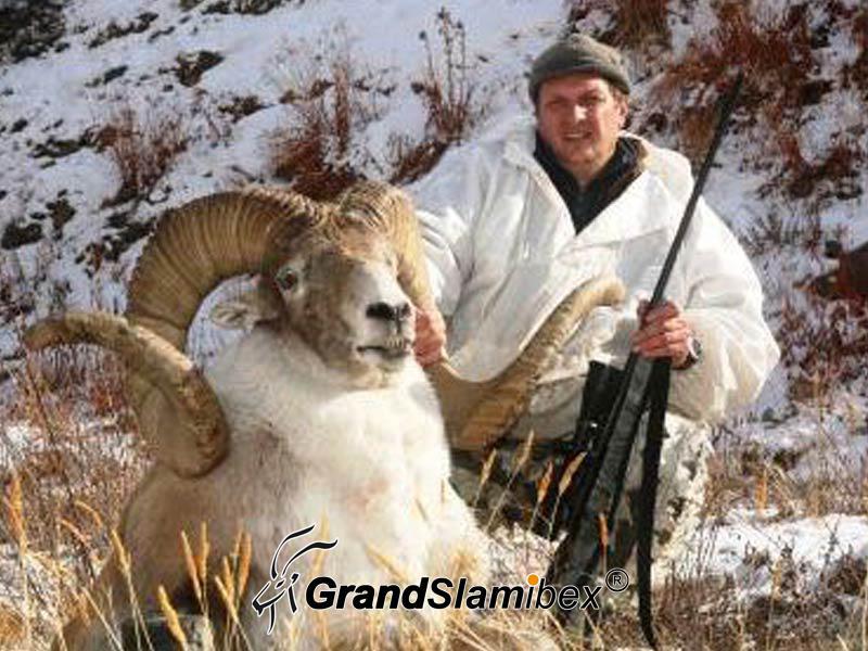 Marco-Polo-Sheep-Hunt-in-Kyrgyzstan-S2 (2)