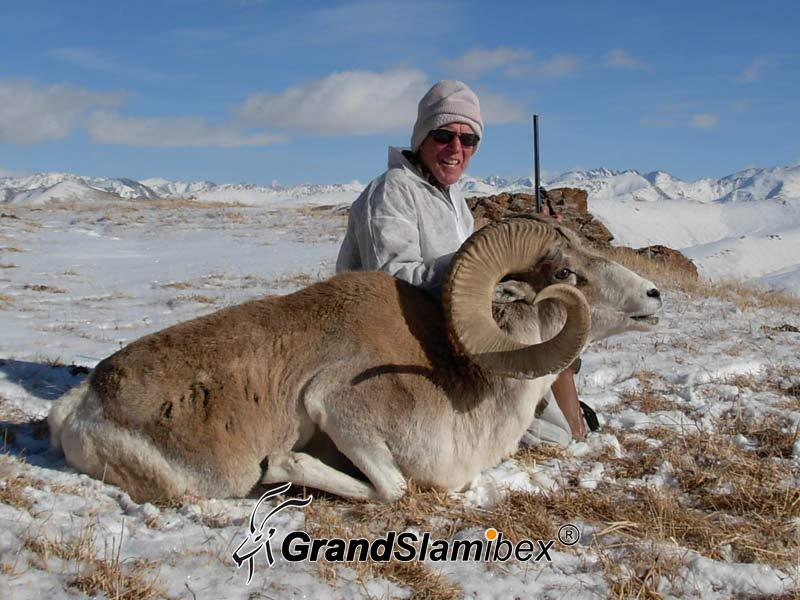 Marco-polo-sheep-hunting-in -Kyrgyzstan - S1 (1)