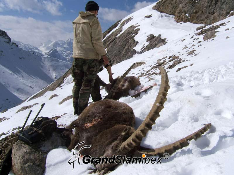 Mid-Asian-Ibex-Hunting-in-Kyrgyzstan-S2 (6)