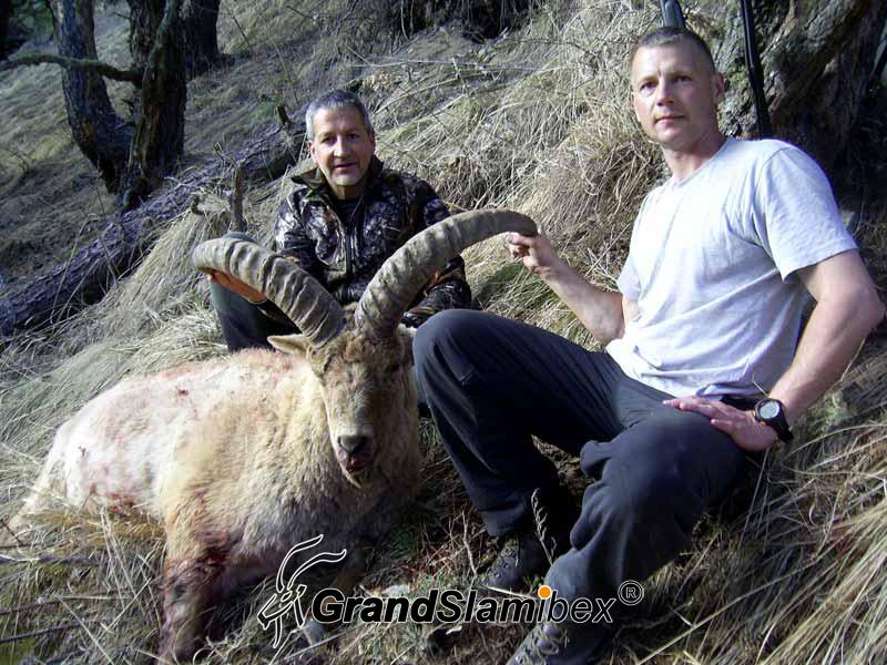Mid-Caucasian-Tur-Hunting-in-Russia